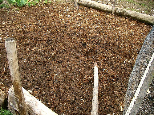 Homemade Fertilizer Ideas