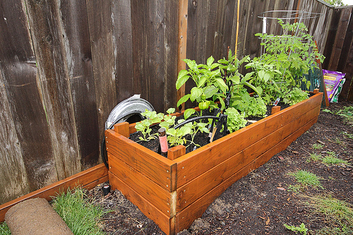 How to Build a Removable Raised Bed Gate