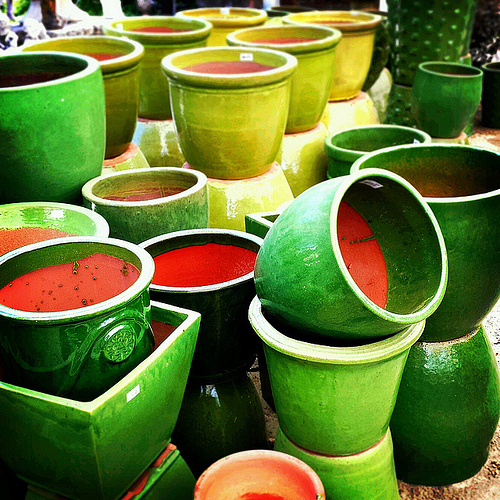 Tips on Finding Cheap, Large Pots for Your Plants