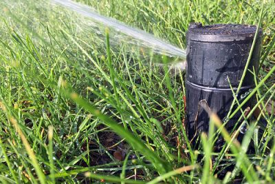 Correcting Drainage and Irrigation Problems in Your Garden